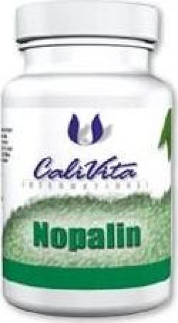 Supliment pentru slabit Nopalin (200 tablete)