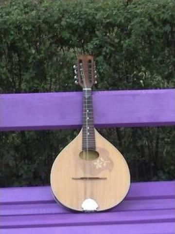 Cursuri de muzica, mandolina, chitara de la Green Trading Oml Srl