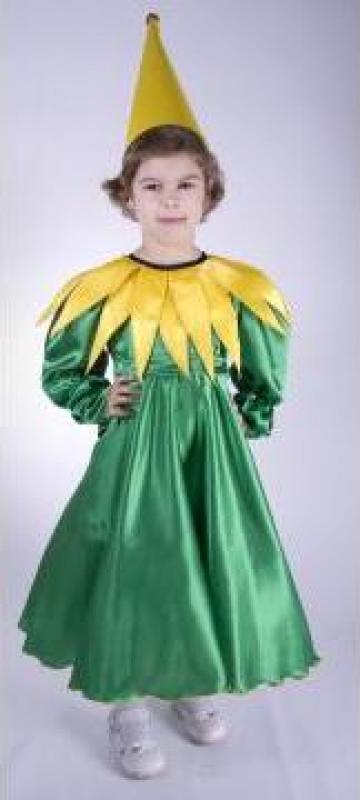 Costume de serbare si carnaval pentru copii si adulti de la Ana Creatie