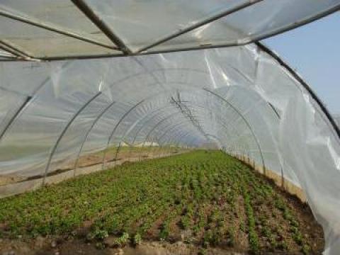 Sera tunel de la Paglio Group