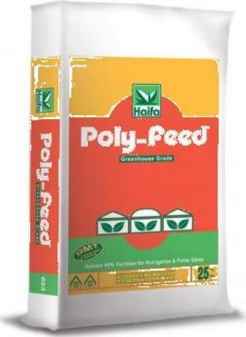 Ingrasamant chimic NPK Polyfeed 19-19-19 + ME de la Sc Stedesa Import Srl