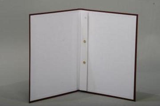 Coperti lucrari de diploma/ licenta/ disertatie de la Apollo Moldoveanu S.r.l.