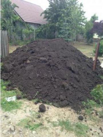 Pamant negru vegetal de la SGI Global Garden