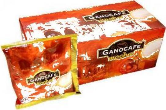 Cafea Gano Cafe Mocha (100% natural) de la PFA Florea Florin Robertino