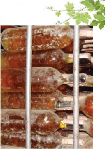 Sticla cu vin Pietroasa Veche Tamaioasa Romaneasca 1986