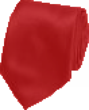 Cravata rosie agenti paza de la Johnny Srl.