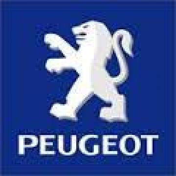 Reconditionari casete directie Peugeot 206 de la Auto Tampa