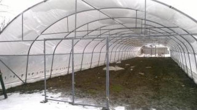 Solar tunel de legume profesional de la Wert Mond Srl