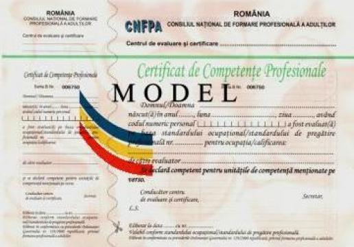 Evaluare competente Operator introducere, validare date de la Estetic Clas Srl.