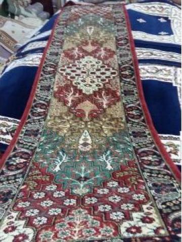 Carpeta Cisnadie 15