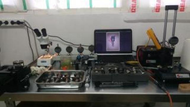 Servicii calibrare injectoare de la Bla.Mar Reparatii Injectoare Srl