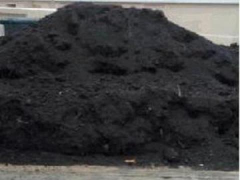 Pamant negru vegetal de padure de la Trans Udroiu Srl
