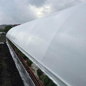 Folie solar 6.5m * 60m (150 micron) de la Www.magazin-agro.ro
