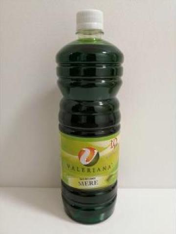 Sirop pentru granita 1 litru mere verzi de la Cristian Food Industry Srl.