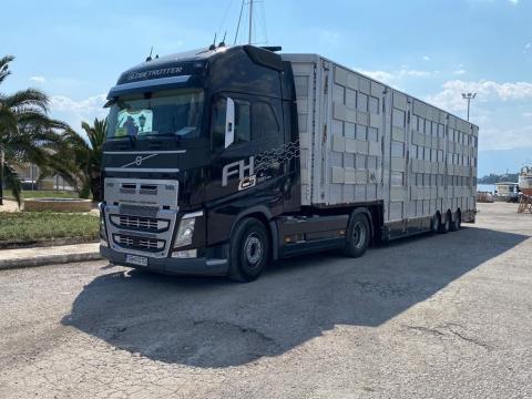 Camion Volvo FH-500 semiremorca Pezzaioli transport animale de la Jinarul Srl