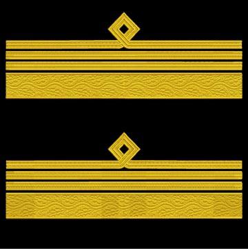Broderie Grade maneca pentru Comandor Aviatie MAPN