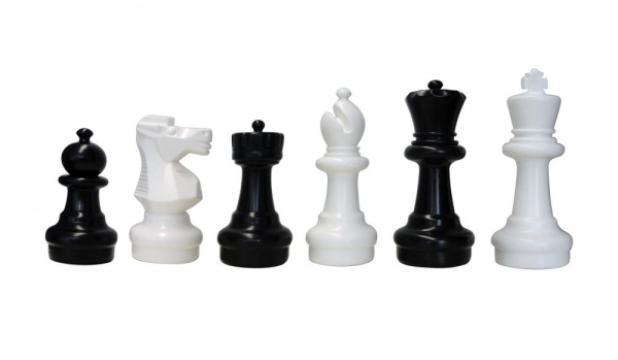Set piese sah de gradina - mic de la Chess Events Srl