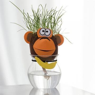 Planta decorativa Cap de iarba animale