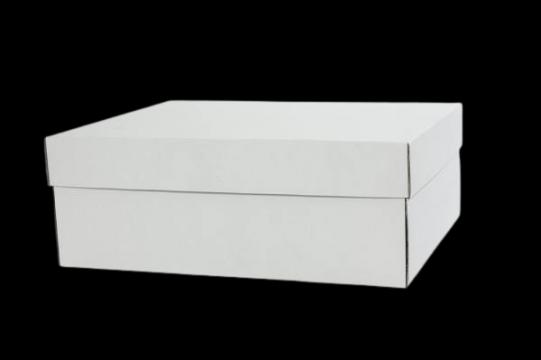 Cutii albe tort 45x55x16cm de la Cristian Food Industry Srl.