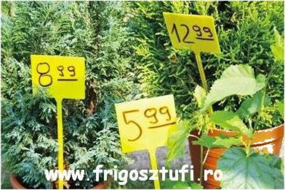 Indicator pret inscriptibil pentru flori cu infigere