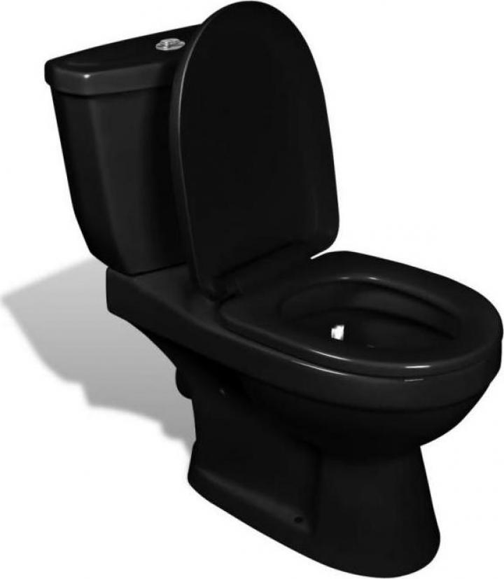 Toaleta cu rezervor negru