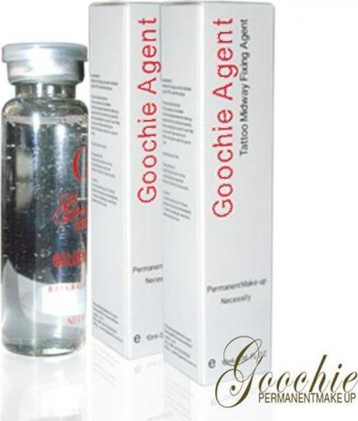 Agent fixator pigment Goochie