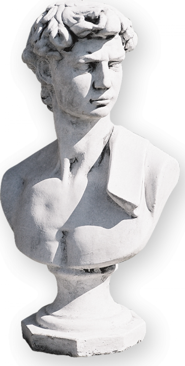 Decoratiune gradina statuie-bust David SB04